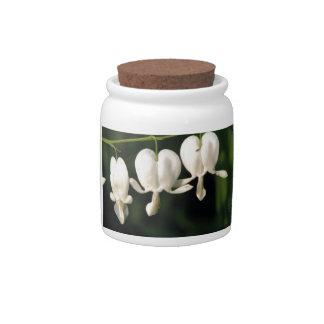 tres flores blancas del corazón sangrante plato para caramelo