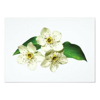 Tres flores de Apple Anuncio Personalizado