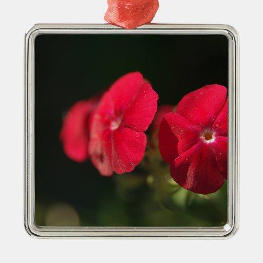 Tres flores rojas adorno