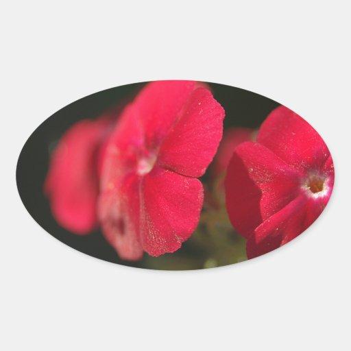 Tres flores rojas pegatina ovalada