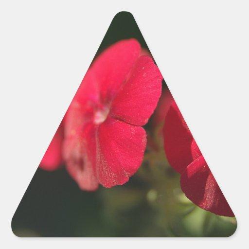 Tres flores rojas pegatina triangular