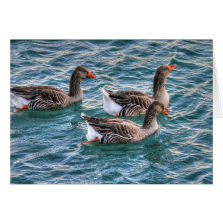 Tres gansos que nadan en agua azul tarjeta de felicitación