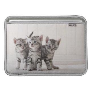 Tres gatitos de Shorthair del americano Funda Para Macbook Air