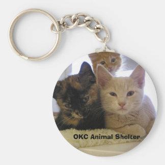 Tres gatitos del refugio llavero redondo tipo pin