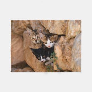 Tres gatitos que alzapriman lindos manta de forro polar