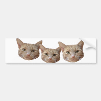 Tres gatos beige/blanco/naranja pegatina para auto