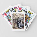 Tres gatos lindos encresparon para arriba dormido cartas de juego