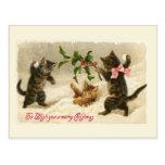 Tres gatos y una rama del acebo postal