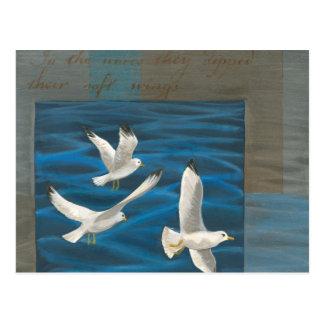 Tres gaviotas blancas que vuelan sobre el agua tarjeta postal