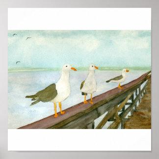 Tres gaviotas en la verja póster