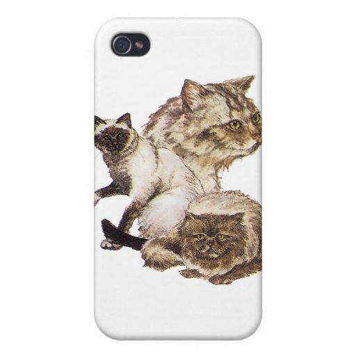 Tres grises y gatos de oro del mascota de Brown bo iPhone 4 Coberturas