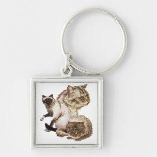 Tres grises y gatos de oro del mascota de Brown Llavero Cuadrado Plateado