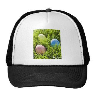 Tres huevos pintados gorras de camionero