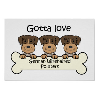 Tres indicadores Wirehaired alemanes Poster