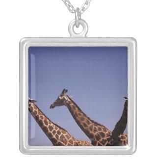 Tres jirafas joyeria personalizada