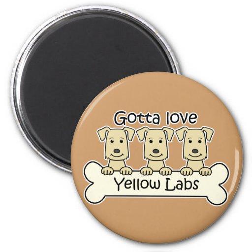 Tres laboratorios amarillos imanes para frigoríficos