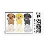 Tres labradores retrieveres sellos