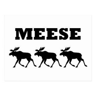 Tres Meese divertido Tarjetas Postales