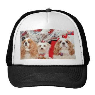 Tres navidad sabio de los perritos gorra