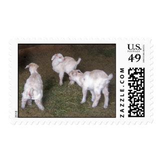 Tres niños timbre postal
