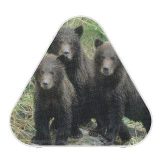 Tres oso grizzly Cubs o Coys (Cub del Altavoz Bluetooth