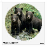 Tres oso grizzly Cubs o Coys (Cub del Vinilo Adhesivo