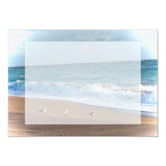 tres pájaros en la playa de la Florida de la foto Invitación