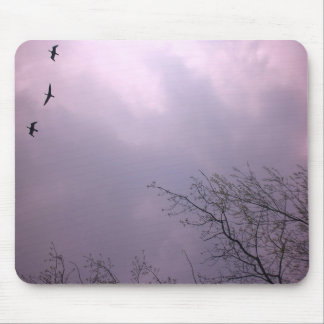 Tres pájaros vuelan tan arriba mouse pad