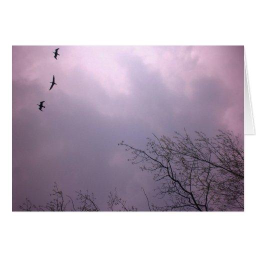 Tres pájaros vuelan V2 tan alto Tarjeta De Felicitación