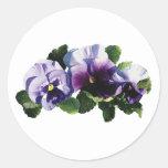 Tres pensamientos púrpuras etiqueta redonda