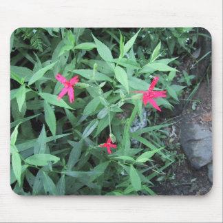 Tres pequeñas flores rosadas tapetes de ratón