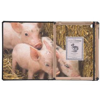 Tres pequeños cerdos iPad carcasas