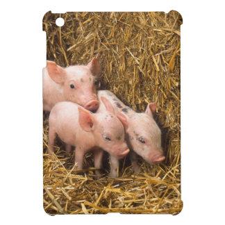 Tres pequeños cerdos iPad mini fundas