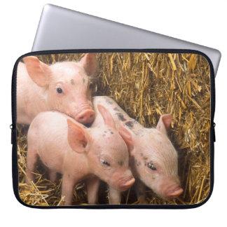 Tres pequeños cerdos funda ordendadores
