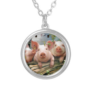 Tres pequeños cerdos grimpola