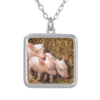 Tres pequeños cerdos joyería