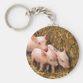 Tres pequeños cerdos llavero redondo tipo pin