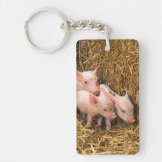 Tres pequeños cerdos llavero rectangular acrílico a una cara