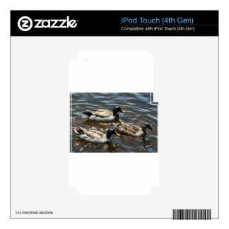 Tres pequeños patos skins para iPod touch 4G