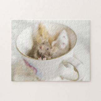 Tres pequeños ratones que localizan en taza rompecabezas con fotos
