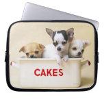 Tres perritos de la chihuahua en lata de la torta mangas portátiles