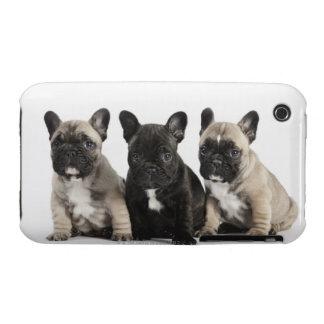 Tres perritos pedigríes Case-Mate iPhone 3 protectores