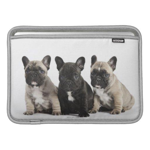 Tres perritos pedigríes funda macbook air