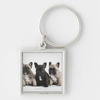 Tres perritos pedigríes llavero personalizado