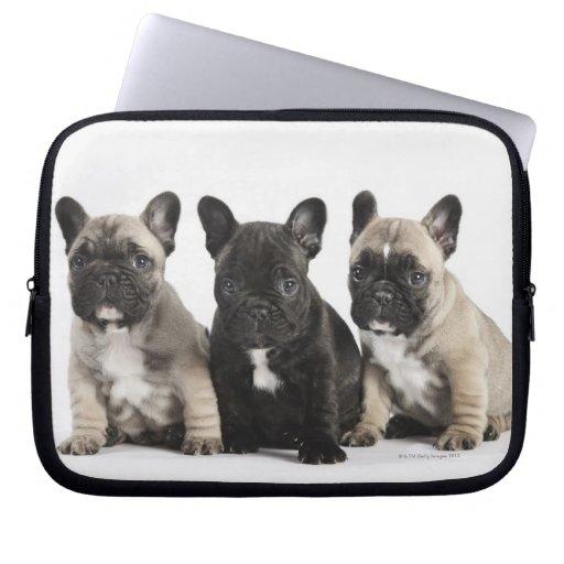 Tres perritos pedigríes manga portátil