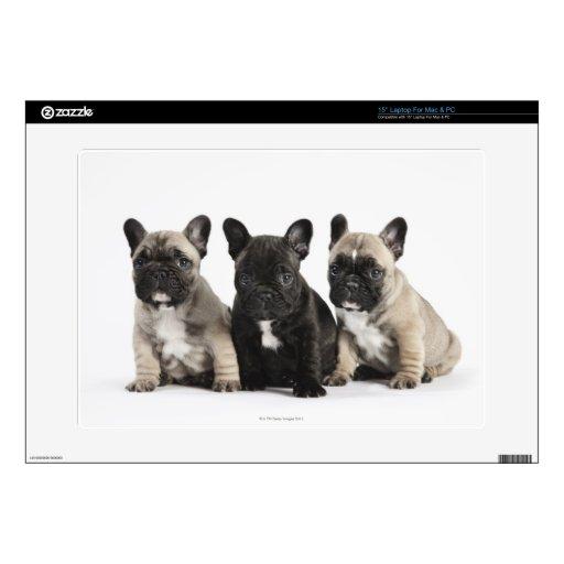 Tres perritos pedigríes skins para 38,1cm portátiles