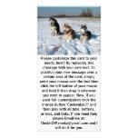 Tres perros interesantes del Malamute Tarjetas Con Fotos Personalizadas