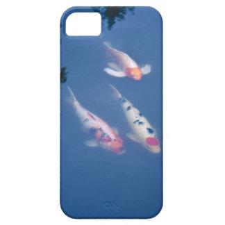 Tres pescados japoneses del koi en la charca iPhone 5 funda