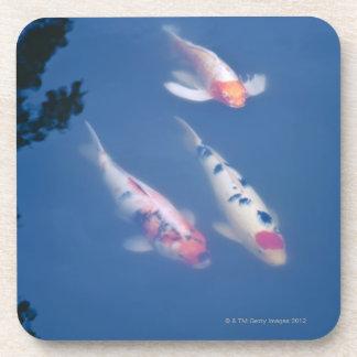 Tres pescados japoneses del koi en la charca posavaso
