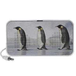 Tres pingüinos de emperador, isla de la colina de  mini altavoces